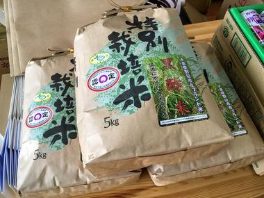 野田市黒酢米