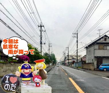 雨の野田市20170215