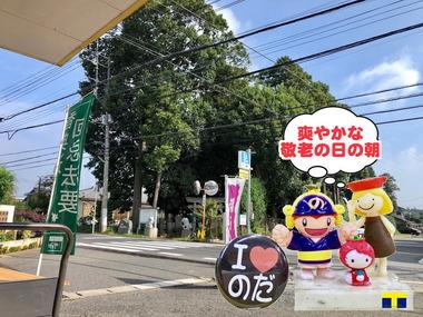 野田市:敬老の日の朝2018