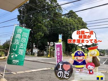 台風21号一過の野田市