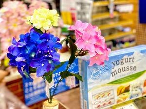 九州は梅雨入り2021