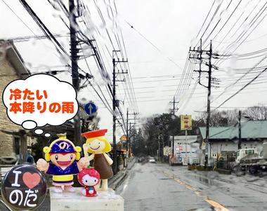 本降りの雨201703