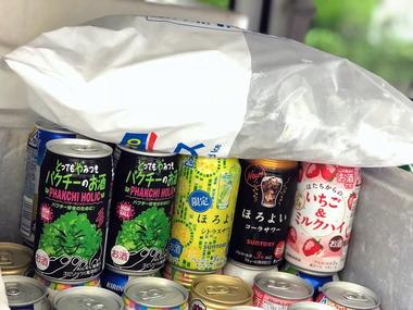 パクチーサワー缶チューハイアソートセット