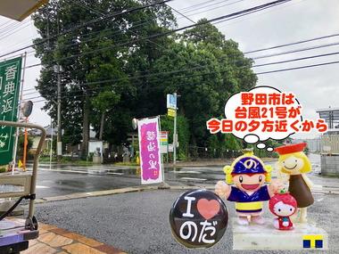 台風21号の影響の野田市