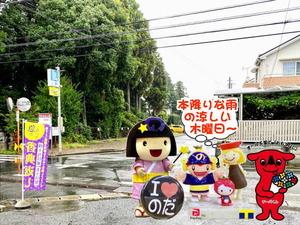 またまた雨の野田パワスポ
