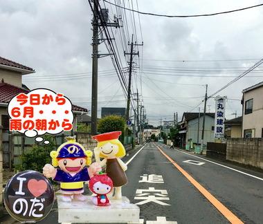 6月に入った野田市20170215
