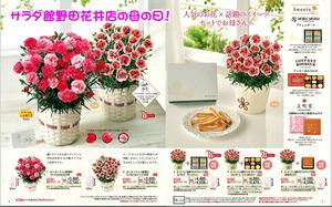 サラダ館の母の日フラワーギフト・花