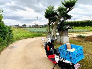 野田市配達の旅