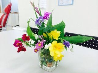 ④春の花々