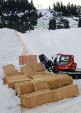 雪不足でハーフパイプの土台などに牧草を使用(バンクーバーで)=尾賀聡撮影(読売新聞社)