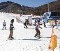 スノーボーダーらが訪れているあららぎ高原スキー場=阿智村浪合
