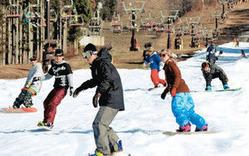 青空の下に伸びる全長1500メートルの滑りを楽しむ人たち=郡上市高鷲町の鷲ケ岳スキー場で