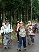 森林浴を楽しみながら歩く参加者