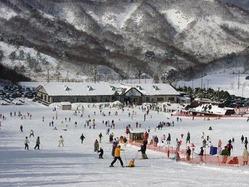 リフト利用料を無料にする秋田市の「太平山スキー場・オーパス」