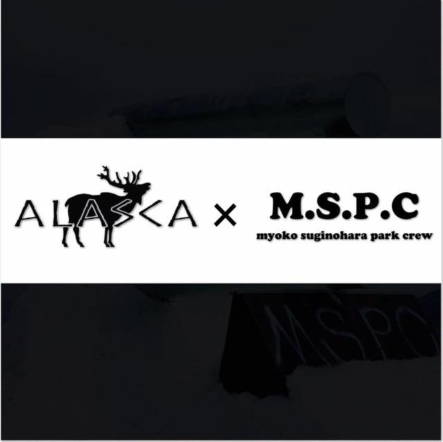 Alaska × myoko suginohara park