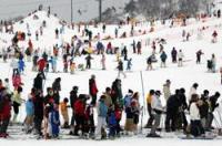 20年ぶりの大雪に恵まれ、大勢のスキー客でにぎわうゲレンデ(2月11日、高島市・箱館山スキー場)