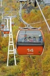 紅葉が見ごろを迎えた札幌国際スキー場で空中散歩を楽しむ「秋ゴンドラ」=伊藤紘二撮影