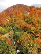 大勢の観光客らが訪れた八海山