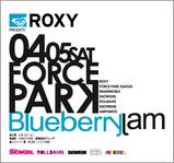 Blueberry Jam 2008
