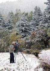 紅葉した木々や道沿いの草木にうっすらと雪が積もった志賀高原。一足早い冬景色にカメラを向ける姿も見られた=3日午前11時15分