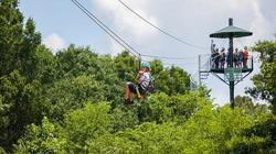 ジップライン、森の中を飛ぶ!夏の新アクティビティが広島で