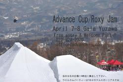 アドバンスカップ2012