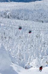 一面を覆う巨大に成長した樹氷群=山形市の蔵王温泉スキー場で、小川昌宏撮影