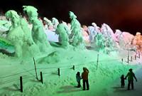 緑や赤のライトで照らされ、夕闇に浮かび上がった樹氷=山形市の蔵王ロープウェイ地蔵山頂駅で2009年2月5日、手塚耕一郎撮影<br>