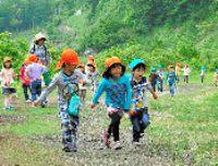 展望台を目指し、元気に山道を歩く園児たち=妙高市関山の関温泉スキー場