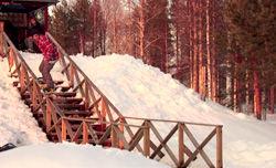 フィンランドのアマチュアムービー「Mortal Wombat」