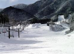 今季初の積雪(写真:産経新聞)