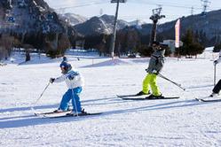苗場スキー場では、ファミリー層向けに、子ども向けの無料のスキー教室も開かれている