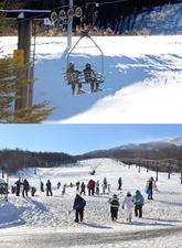 かつてスキーブームを盛り上げたバブル世代とその子どもが、生き残りを図るスキー場の頼みの綱となっている(写真はイメージです)