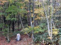 俳句の森にはサンプルの句碑を設置している(広島経済新聞)
