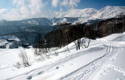 白馬乗鞍岳(右奥)へ山スキーヤーらがよく入山する場所。ゴンドラリフト終点(左下奥)から歩いて登っていく