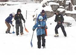 雪崩で人が埋まった事故を想定し、捜索訓練をする参加者