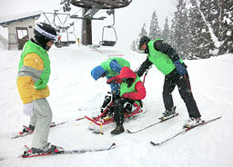 チェアスキーの操作技術を学ぶ参加者=飛騨市河合町稲越、飛騨かわいスキー場