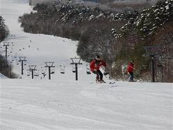 営業するスキー場の減少傾向に歯止めがかからない状況の中、関係者の苦悩は続く=2月、長野県内のスキー場(写真:産経新聞)<br>