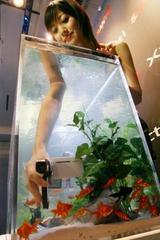 水深1.5メートルでの撮影が可能な三洋電機の「ザクティ DMX−CA65」=東京都内で、小座野容斉撮影(毎日新聞)