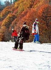 スノーボーダーが、紅葉に囲まれたスロープを滑っている。