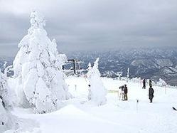 リフト駅頂上付近から樹氷を望む(平成22年1月撮影)wikipedia