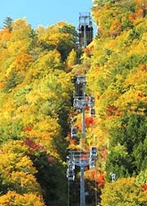 紅葉が見頃を迎えた「富士見台高原ロープウェイ」の山頂駅周辺=阿智村智里