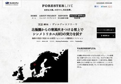 FORESTER LIVE