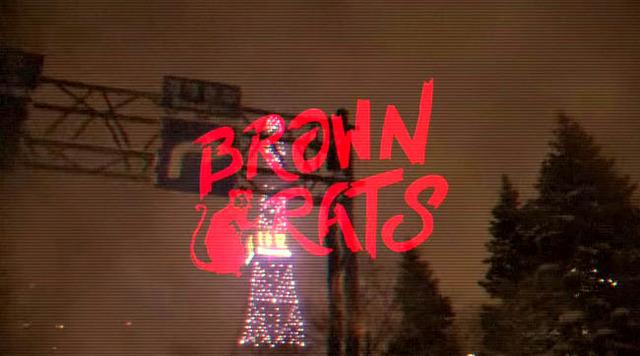 BROWNRATS3