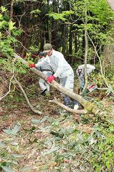 古道上の倒木を取り除く住民
