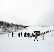 白銀の世界が広がる茶臼山高原スキー場(とよね観光提供)