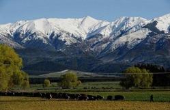 ニュージーランド南島の風景(2011年9月25日撮影)。