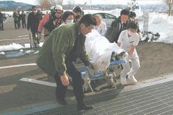 2日ぶりに救助され、公立刈田総合病院に運び込まれる山口さん=16日午前10時50分ごろ、白石市