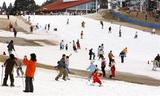暖かい休日で賑わうスキー場。降雨の影響などで部分的に雪が解けている部分もあった=15日午後、六甲山人工スキー場(大塚聡彦撮影)(写真:産経新聞)