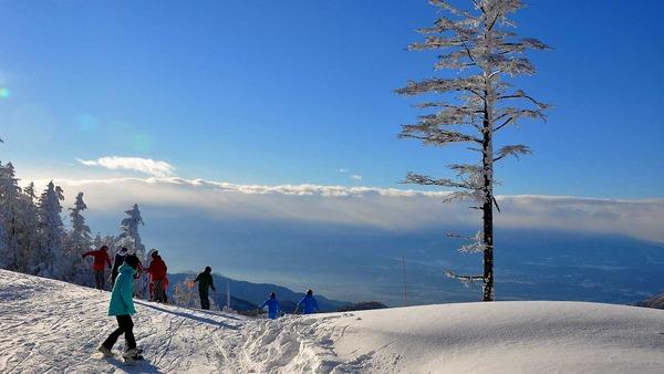 2014年 スキー&スノボ旅行ランキング発表